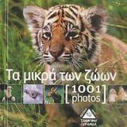 1001 PHOTOS, ΤΑ ΜΙΚΡΑ ΤΩΝ ΖΩΩΝ